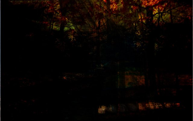 a_seasonal_forest__prologue_by_itab